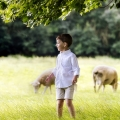 Boy-in-field-with-sheep